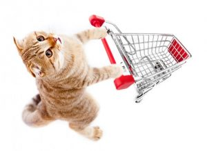 cat shopping online buying some digital products