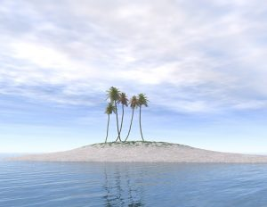 Deserted island With Palm Trees - wait for good traffic before launching digital product